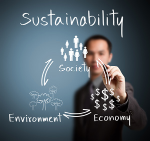 Sustainability Assessments